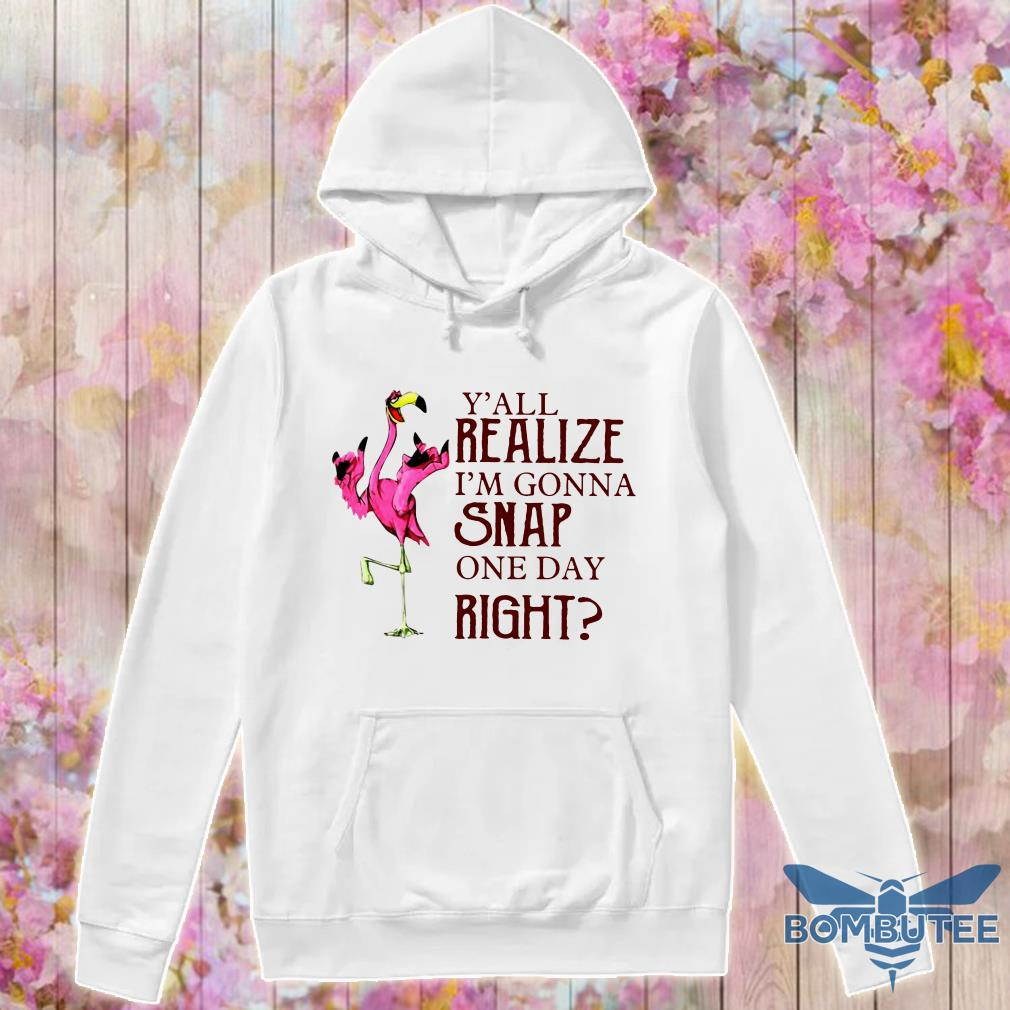 Flamingo Y'all Realize I'm Gonna Snap One Day Right hoodie